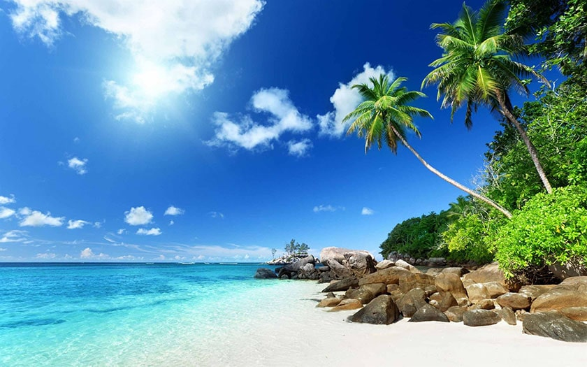Hình nền thiên nhiên cảnh biển