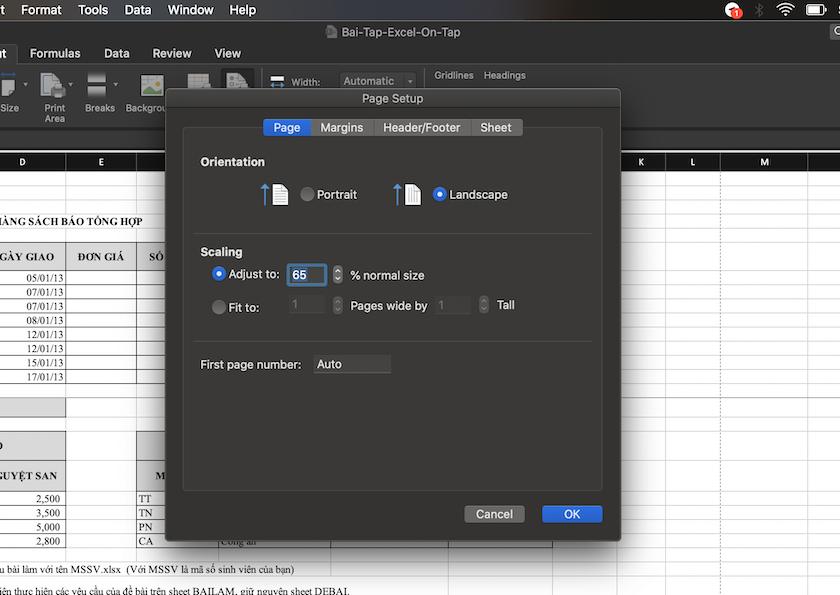 Thiết lập co giãn dữ liệu trang Excel khi in